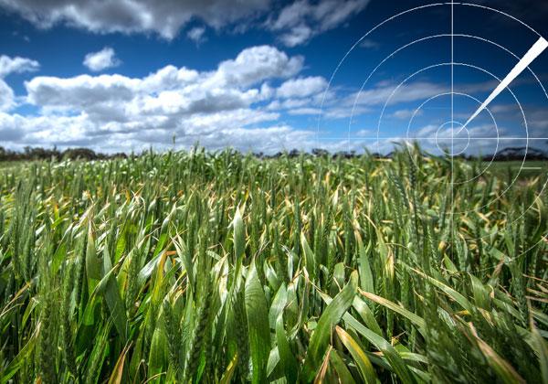 پردازش-تصاویر-راداری-کشاورزی